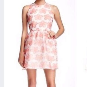 BB Dakota floral fit & flare mini dress size 4